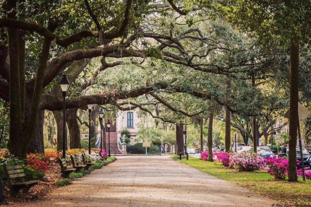Savannah-GA